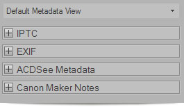 ACDSee 14 metadata view