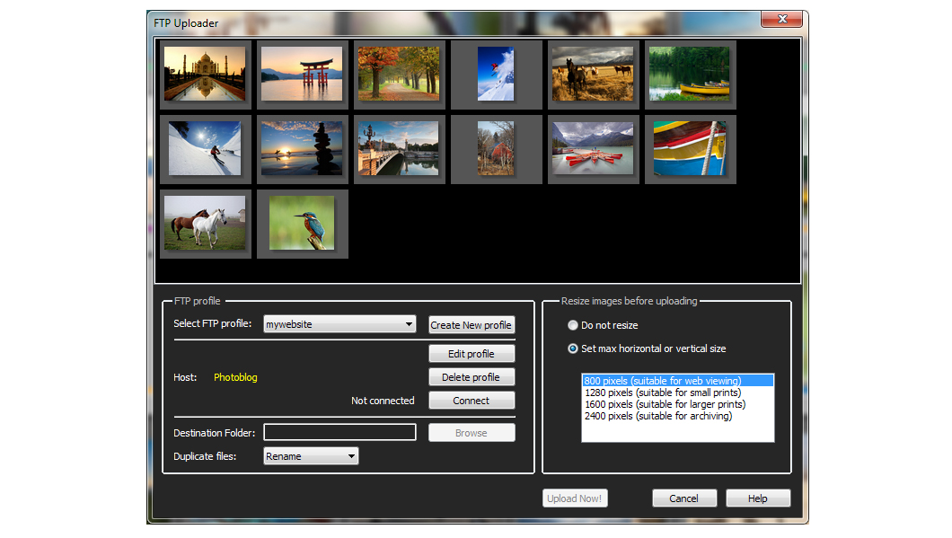 Download ACDSee& Photo Studio Standard