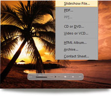 Create slideshows with ACDSee 14
