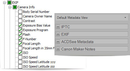Metadata in ACDSee 15