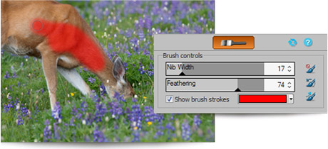 Brush on edits in ACDSee 15