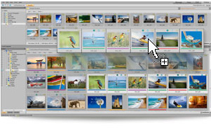 Store your photos in the cloud with ACDSee 15