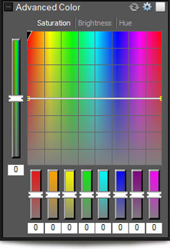 Advanced Color window in ACDSee Pro 5