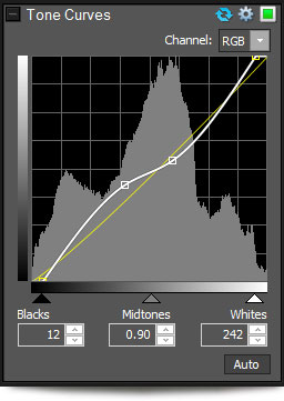 Tone Curves window in ACDSee Pro 5