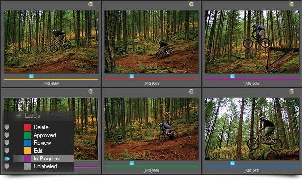 وعلى المستوى العالي [ ACDSee Pro v5.1.137 ] مستعرض الصور الأول بسيريال اصلي