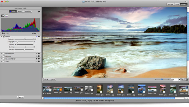 ACDSee Pro (Mac) processing view