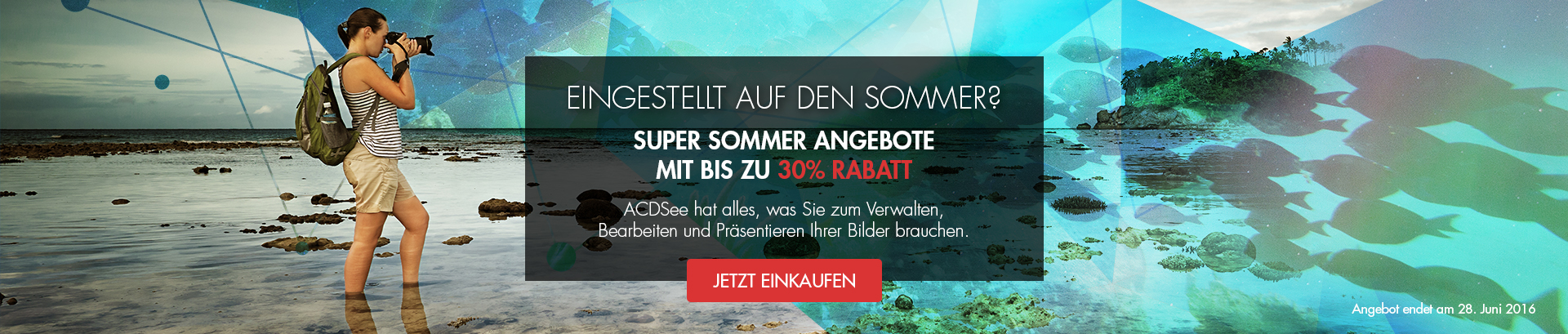 Set for Summer 30%