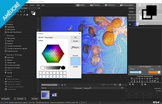 Work with Vector and Raster Images