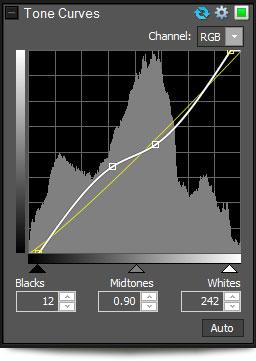 حصريا برنامج تعديل و عرض الصور ACDSee 14.2.157 بتاريخ اليوم scr-dev-tone-curves.