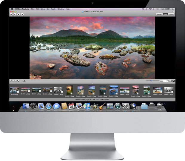 ACDSee Pro's powerful and customizable View mode