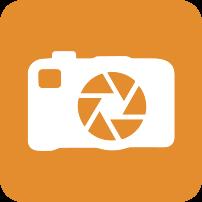 Standard 2018 Icon