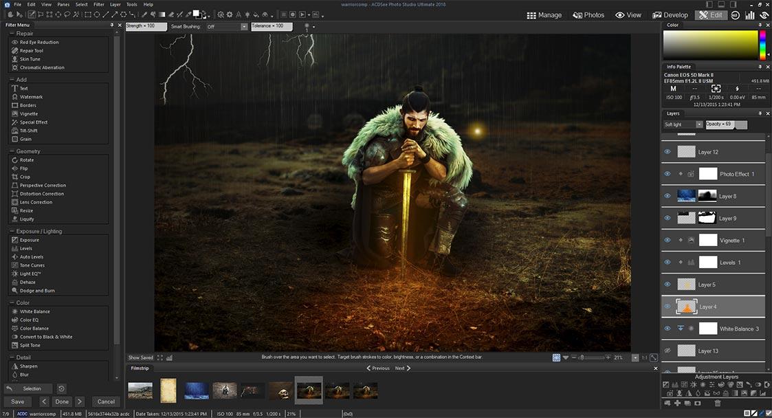Resultado de imagen de ACDSee Photo Studio Ultimate